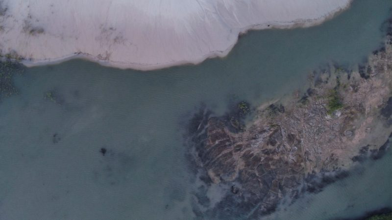 BP Oil Spill Preliminary Macroeconomic Impacts on Alabama