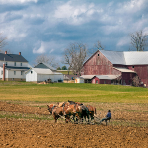 Rural Alabama